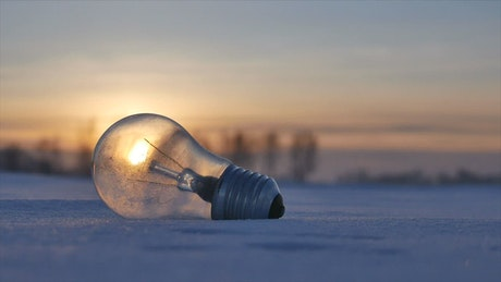 Lightbulb in snow