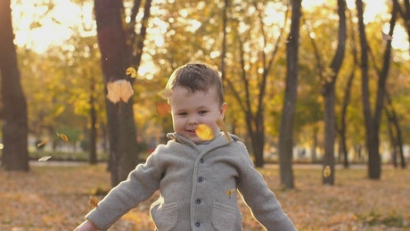 Little boy in the park while floating autumn leaves