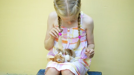 Little girl playing with a kitten on her lap