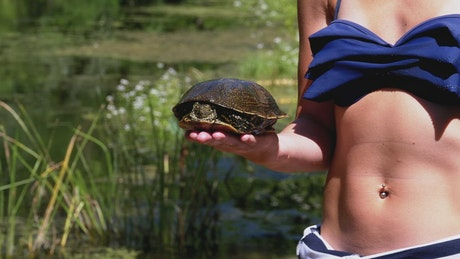 Little girl shows a turtle to the camera