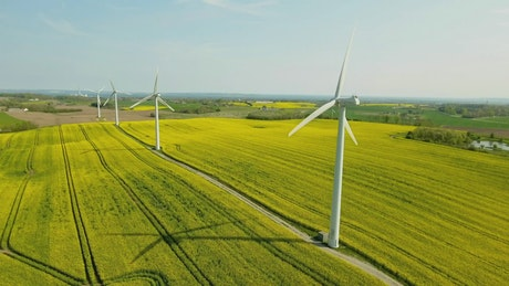 Long line of wind turbines