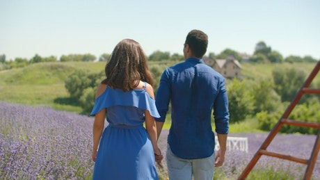 Lovers walking through a lavender field