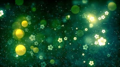 Luminous flowers and glitter, background