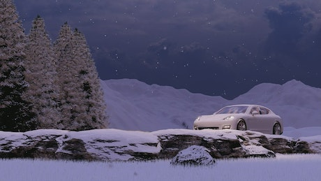 Luxury sports car in winter nature