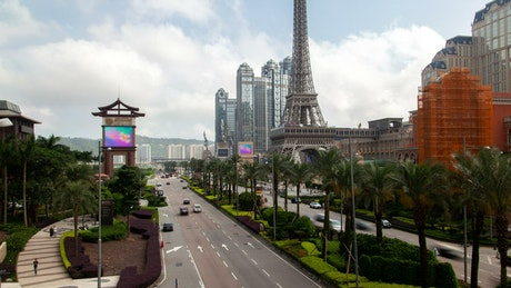 Macau Street traffic and palms