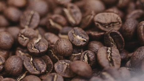 Macro shot of roasted coffee beans moving