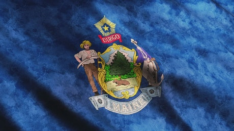 Maine State flag from USA