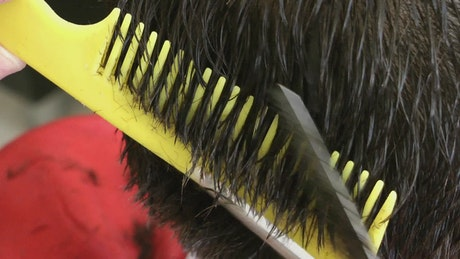 Making a haircut with scissors and comb