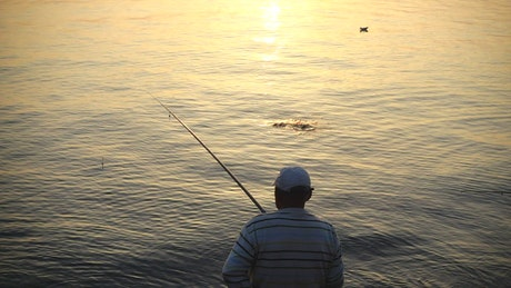Man catching a fish in the evening