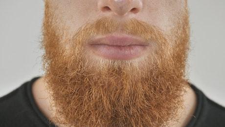 Man combing his red beard