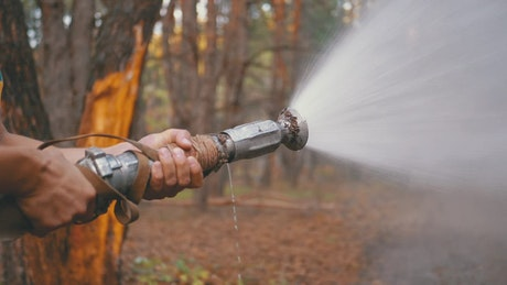 Man holding a fire hose in the woods