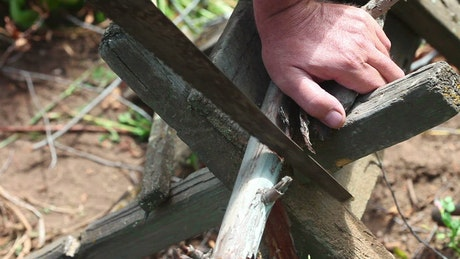 Man is sawing tree branches