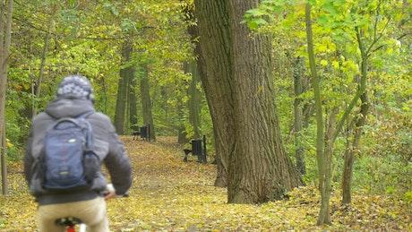 Man pedaling through the park path