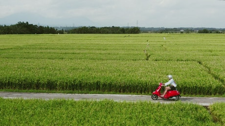 Man rides red scooter through green farm fields
