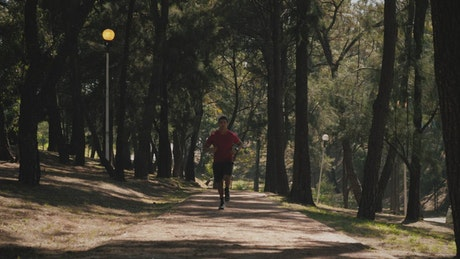 Man running on trail in the park