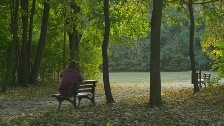 Man spending time in a park in nature