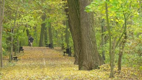 Man walking and running through a park path