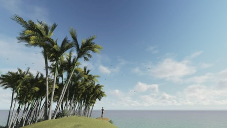 Man watching the calm sea from an island in 3D