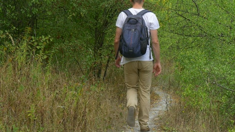 Man with backpack walking on a forest path