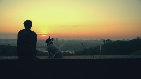 Man with his dog watching the sunset on the horizon