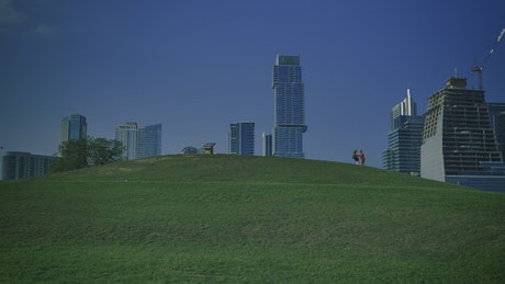 Meadow in a park surrounded by a big city