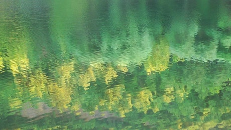 Meadow reflected in the water of a calm river