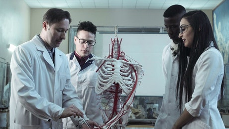 Medical students at anatomy lecture in an university