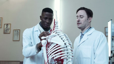 Medical students learning with dummy skeleton