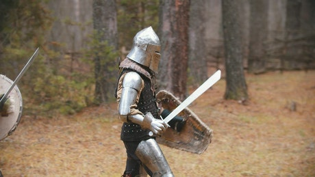 Medieval knights battling in the woods