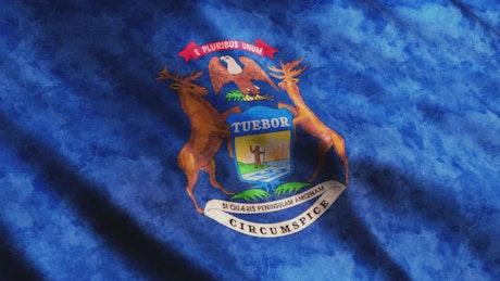 Michigan State 3D flag