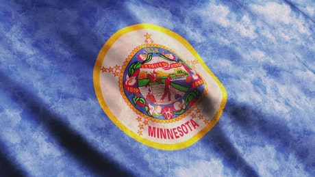 Minnesota State waving flag