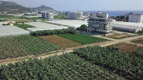 Modern farm at the coast