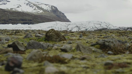 Moss covered rocks by a glacier