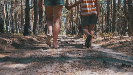 Mother and son walk holding hands in a forest