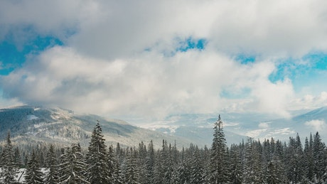 Moving clouds over a snowy wooded landscape