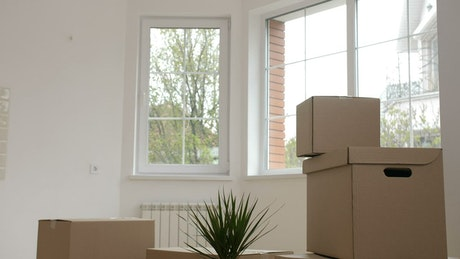 Moving into a newly purchased house