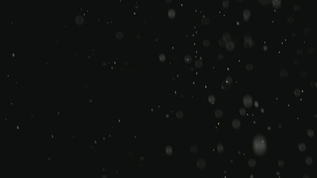 Natural snow falling