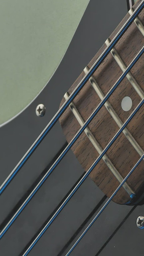 Neck of an electric bass