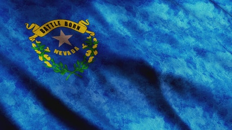 Nevada State Blue Flag