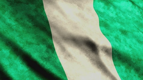 Nigeria flag, African country