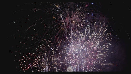 Night sky full of fireworks
