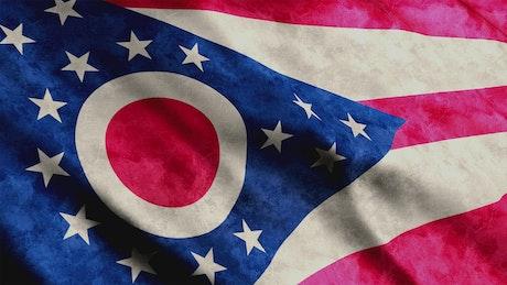 Ohio State 3D flag
