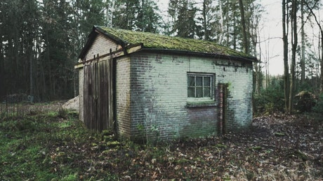 Old brick shed in a forest