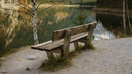 Old wooden bench by the lakeshore
