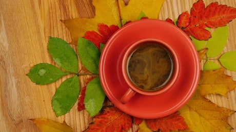 Orange colored cup with coffee with autumn leaves in the table