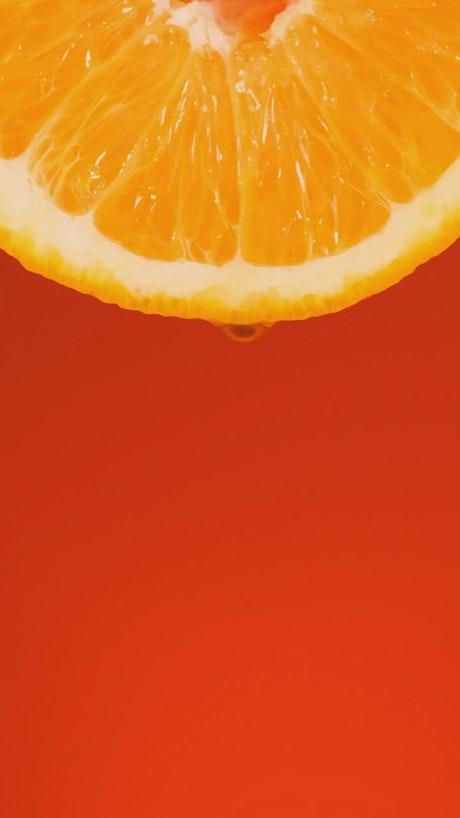 Orange slice on an orange background
