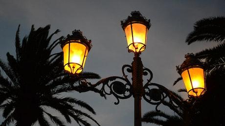 Orange street lamps at night