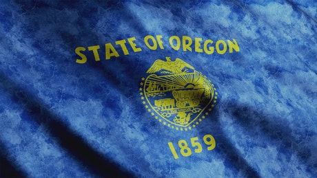 Oregon State flag from USA