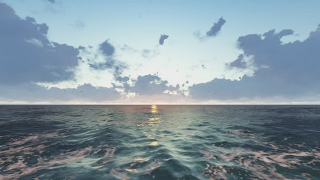 Pacific sea in 3D with birds in a sunset
