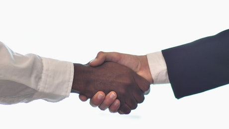 Pair of hands shaking hands on white background